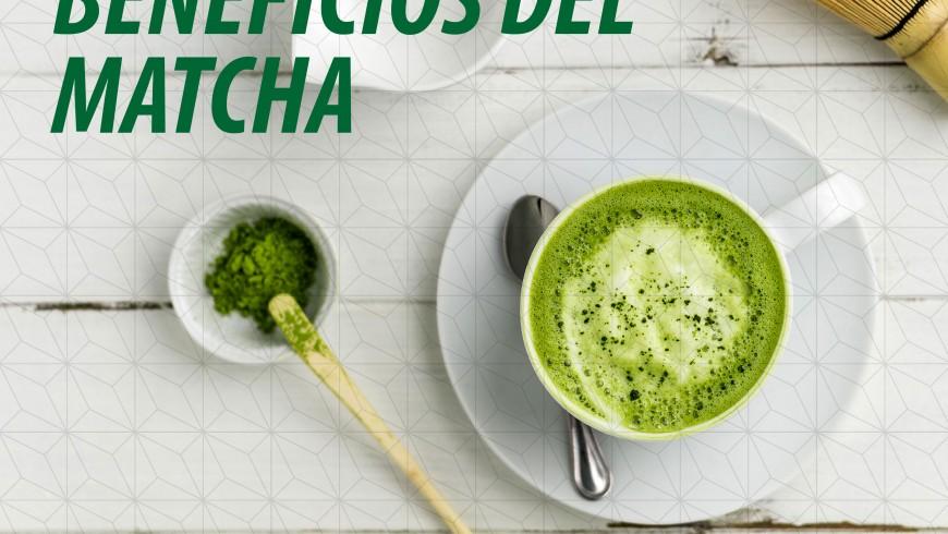 Beneficios del matcha en Fast Fruit Factory